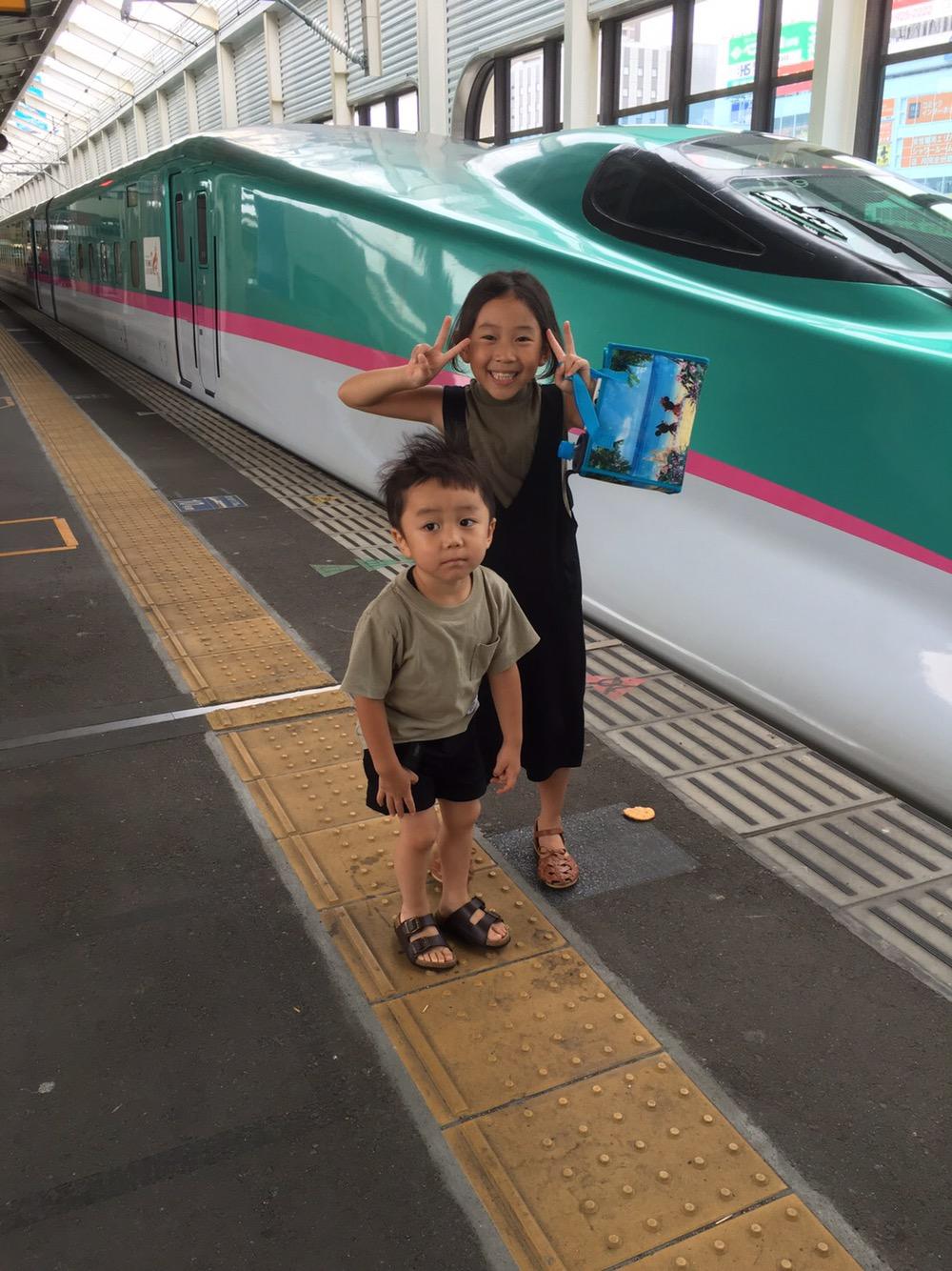 新幹線,はやぶさ