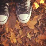 秋の足音を感じる今日この頃