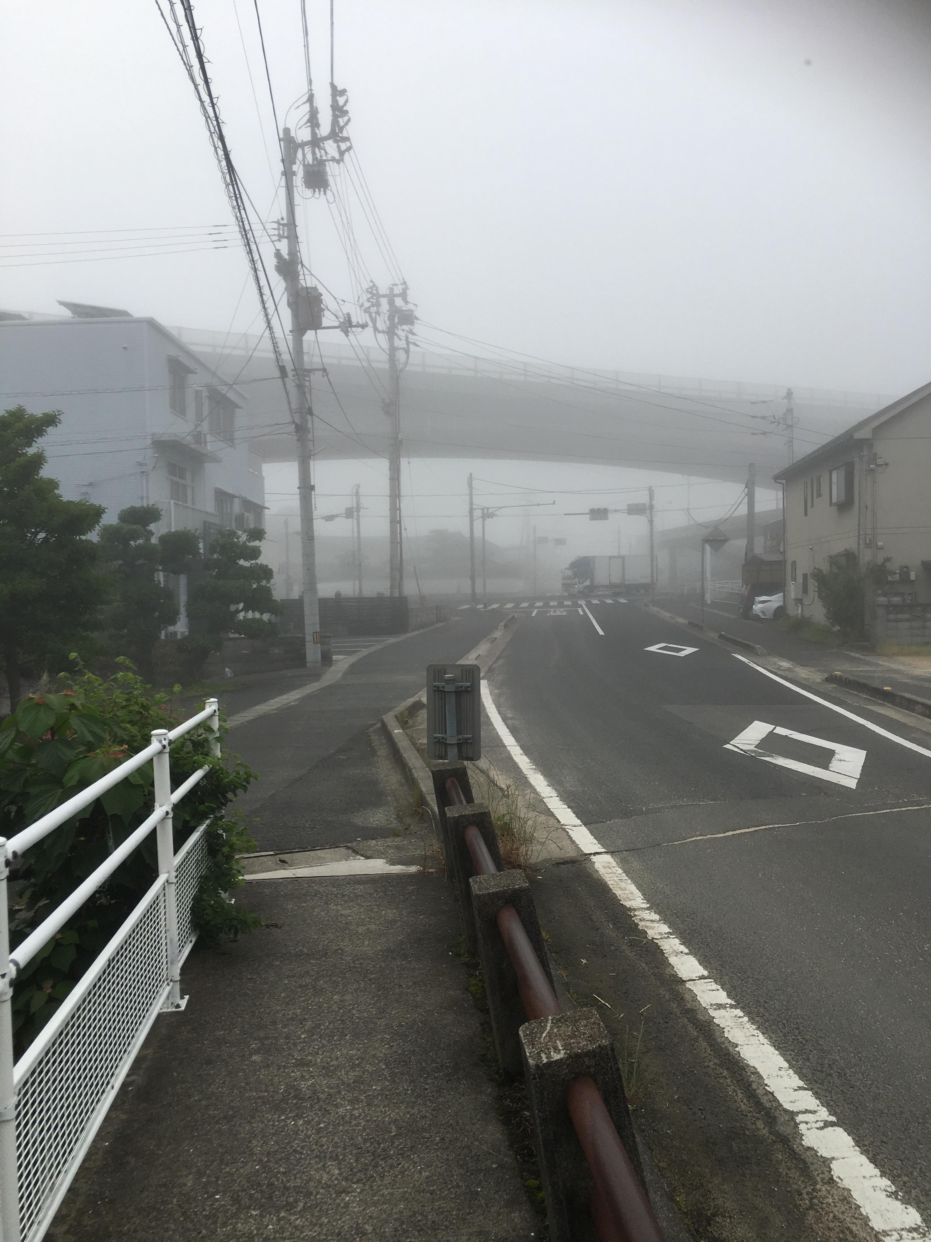 朝ラン,霧