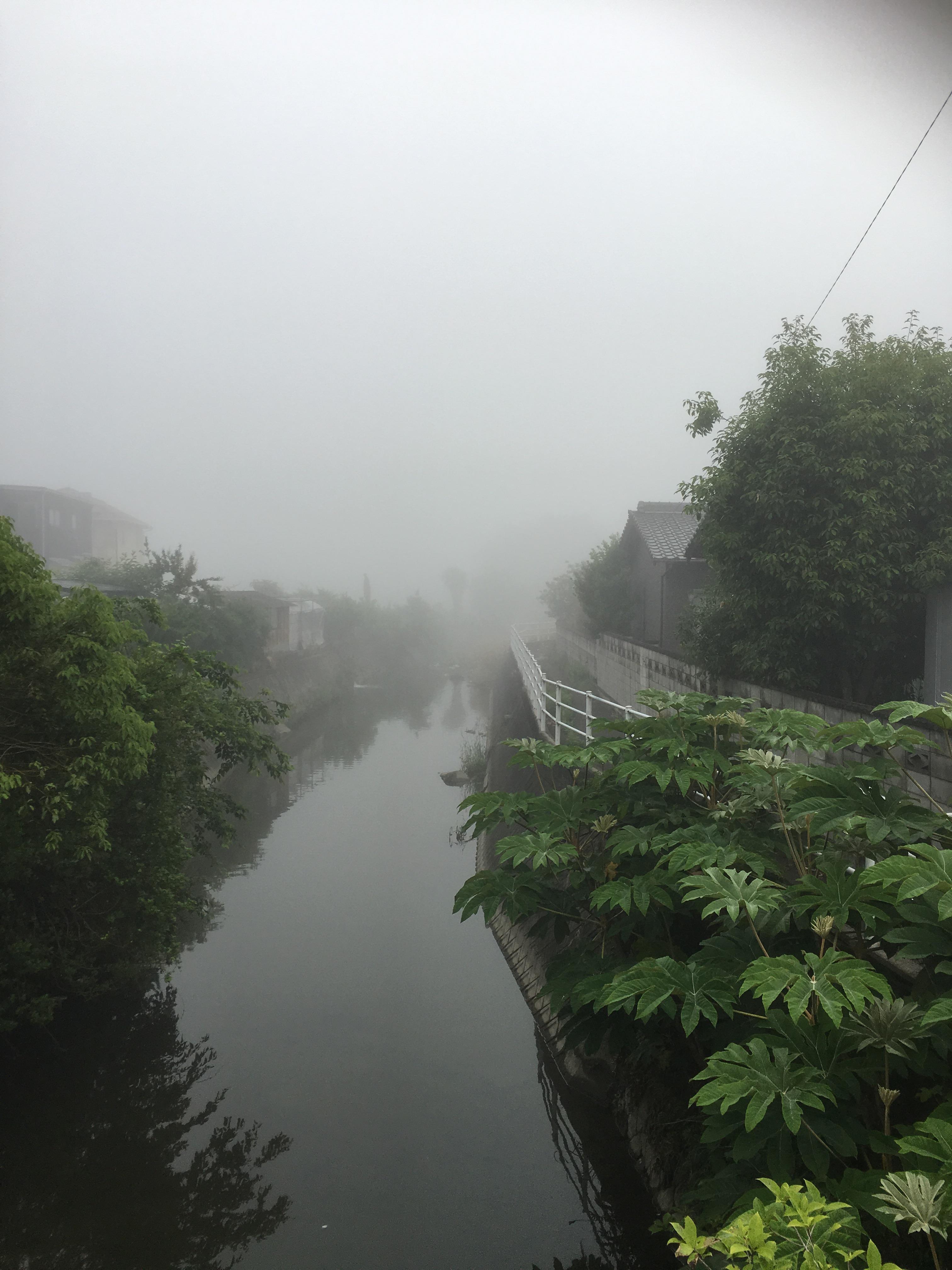 朝霧は晴れる