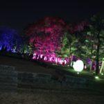 ☆広島城ライトアップ☆