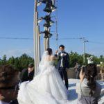 息子っち🧒🏻初めての結婚式💒💍